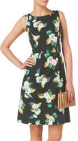 Phase Eight Nadia Print Dress