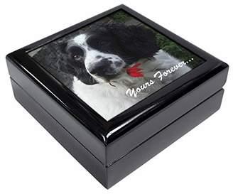 Springer Spaniel 'Yours Forever' Keepsake/Jewellery Box Christmas Gift