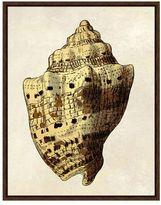 Pottery Barn Gold Leaf Shell Framed Print