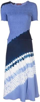Altuzarra Ayumi dress