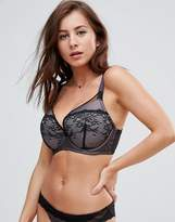 Ultimo Leonie Plunge Fuller Bust Bra DD-G Cup