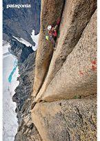 Patagonia Rockin' The Bugaboos Poster