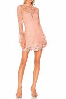 Saylor Lace Mini Dress