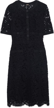 Adam Lippes Grosgrain-trimmed Cotton-blend Corded Lace Mini Dress