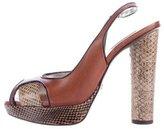 Dolce & Gabbana Snakeskin-Accented Platform Sandals