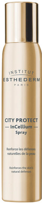 Institut Esthederm Institut Esthedem City Protect Spray 100ml