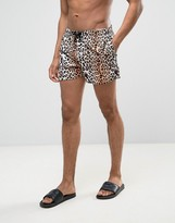 Asos Swim Shorts With Leopard Print In Short Length