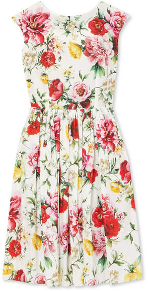 Dolce & Gabbana 花卉印花纯棉连衣裙