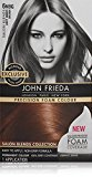John Frieda Precision Foam Colour Permanent Hair Colour Kit Light Amber Brown [6NBG] 1 Each (Pack of 3)