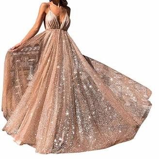MUXAN Women's V Neck Floral Lace Ball Gown Long Chiffon Evening Dress Collar Dress Vintage Irregular Dress Wedding Bridesmaid Party Dress (Silver XL)