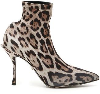 Dolce & Gabbana Leopard-printed Lori Booties