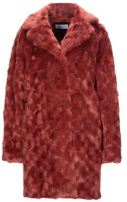Caractere Teddy coat