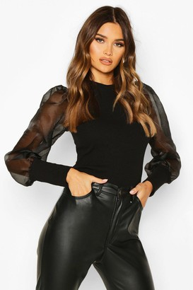 boohoo Organza Mesh Long Sleeve Top