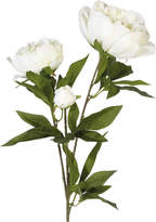 OKA Faux Peony Duchesse de Nemours Flower Stem