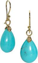 Eliza Small Blue Turquoise Teardrop Earrings