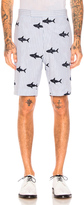 Thom Browne Shark Embroidery Shorts