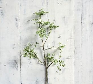 Pottery Barn Faux Green Petal Leaf Branch