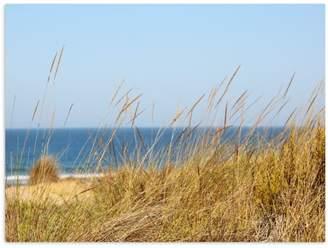 Dune Ocean Wall Art