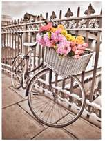 Graham & Brown Bicycle Canvas Print