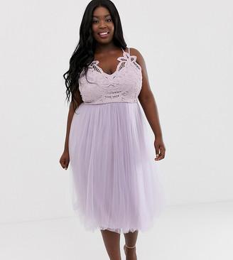 ASOS DESIGN Curve Premium lace top tulle cami midi dress