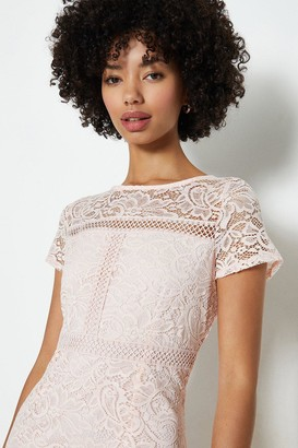 Coast Ladder Trim Lace Pencil Dress