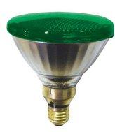 Sylvania Par38 Lamp