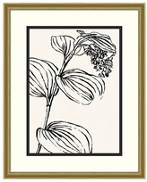 Pottery Barn Leaf Lines Framed Prints