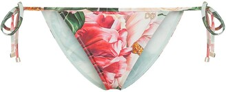 Dolce & Gabbana Floral-Print Bikini Bottoms