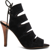 Seychelles Play Along Heel