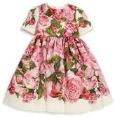 Dolce & Gabbana Toddler's, Little Girl's & Girl's Silk Blend Floral Dress