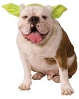 Star Wars Yoda Dog Headpiece Pet Costume