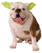 Star Wars Yoda Dog Headpiece Pet Dog Costume - Green