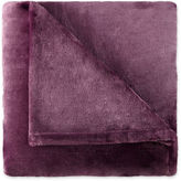 Royal Velvet Silk Touch Blanket
