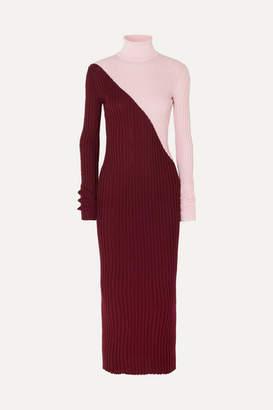 Gabriela Hearst Nazim Two-tone Ribbed Cashmere And Silk-blend Turtleneck Maxi Dress - Burgundy