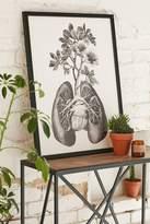 Urban Outfitters Fleuriosity Flourishing Lungs Art Print
