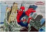 Spiderman Concrete Wall Mural