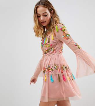 Frock and Frill Folk Embroidered Tassel Skater Dress-Pink