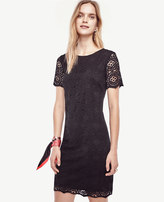 Ann Taylor Petite Mosaic Lace Shift Dress