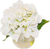The French Bee 8 Hydrangea in Bubble Vase, Faux