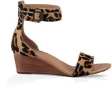 Sole Society Char Leopard stacked wedge sandal
