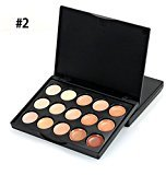 Pure Vie 15 Colors Concealer Camouflage Makeup Palette Contouring Kit #2 for Salon and Daily Use