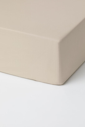 H&M Fitted Cotton Sheet - Beige