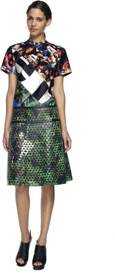 Proenza Schouler Tree Scene Print and Black A-Line Skirt