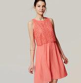 LOFT Circle Lace Bodice Dress