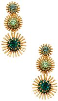 Elizabeth Cole Leonie Statement Earrings