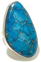 Charles Albert Jewelry Freeform Blue Jasper Sterling Silver Ring