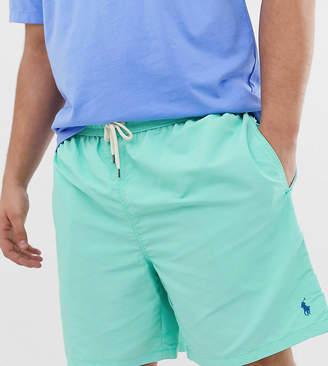 Big & Tall Traveler player logo swim shorts in green