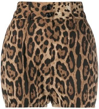 Dolce & Gabbana Leopard-Print High-Waisted Shorts