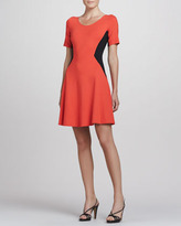 Theory Filopa Colorblock Flare Dress