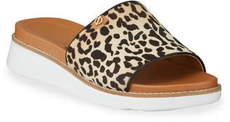 Cole Haan Zerogrand Global Cheetah Slides